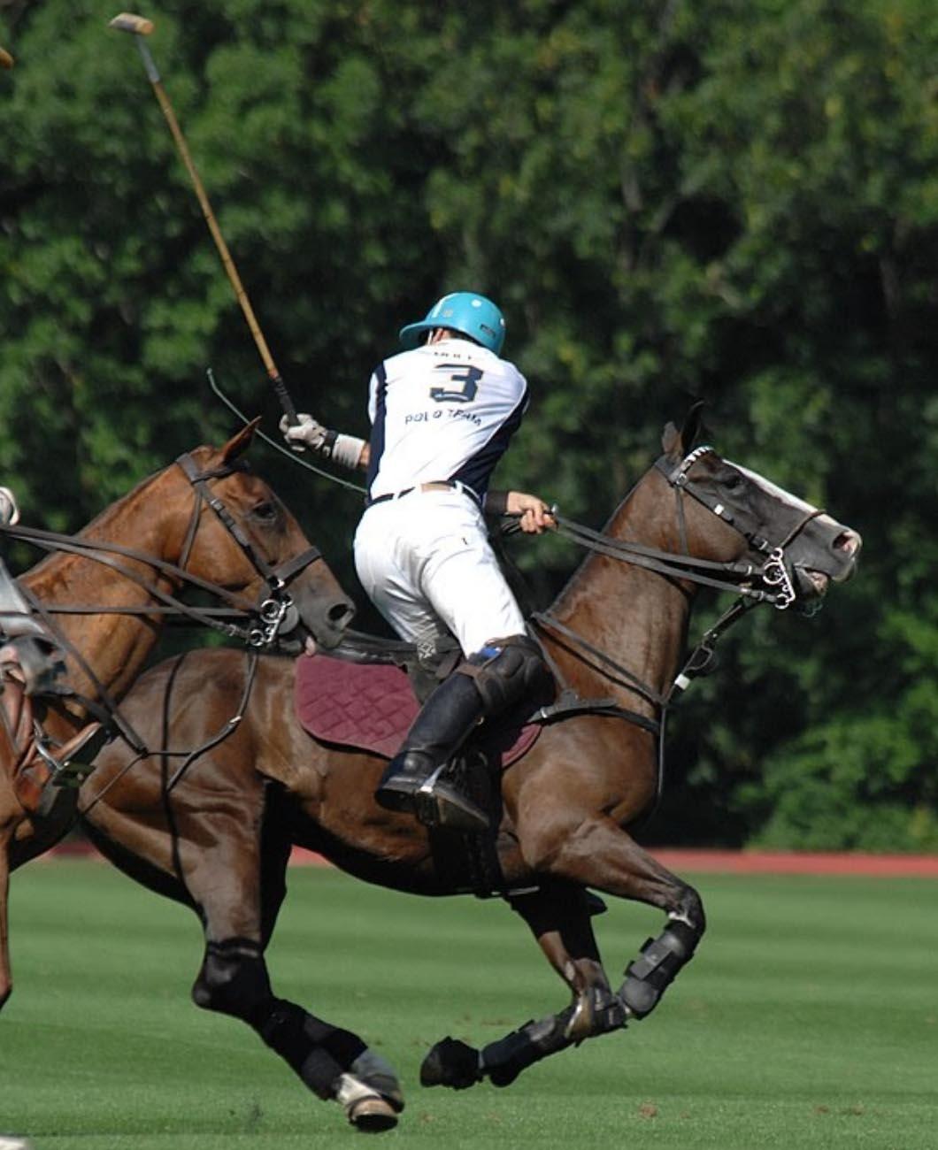 polo_men_player_horses_societal_gender_norms