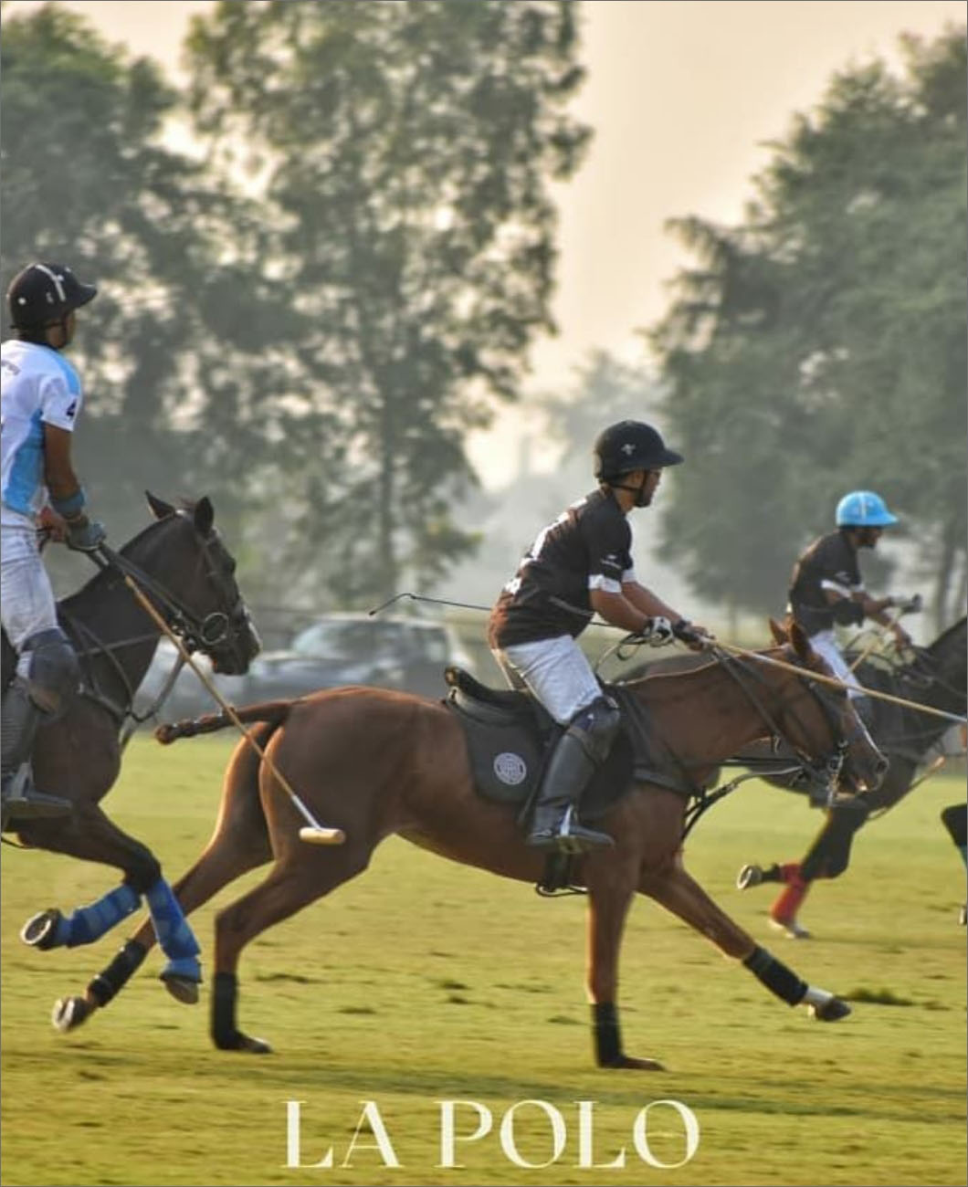 rules-of-polo-la-polo