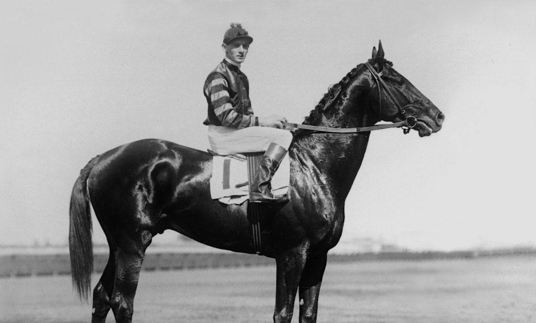 sefton-horse-la-polo