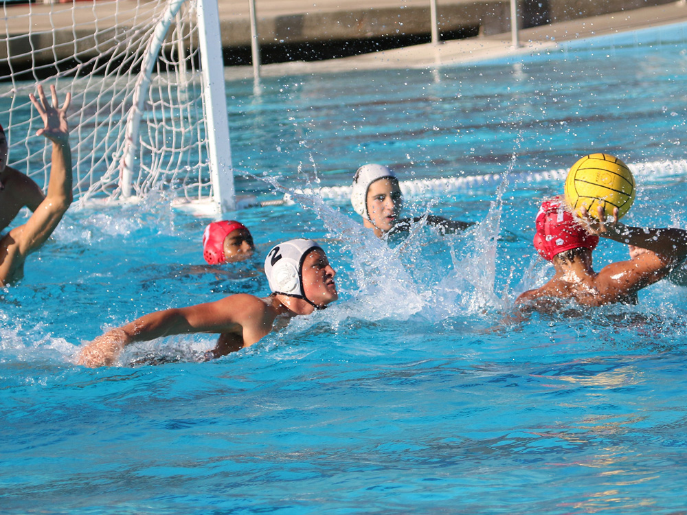 water  Polo , polo in water
